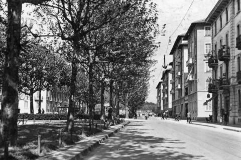 Viale Tibaldi